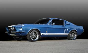 1967 Shelby Mustang Wallpaper