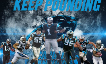 2015 Carolina Panthers Wallpaper