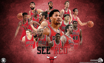 2015 Chicago Bulls Wallpaper