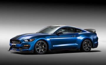 2016 Mustang GT350R Wallpaper