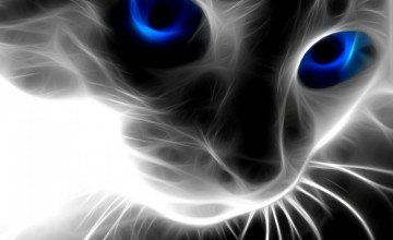 3D Cat Wallpaper