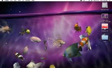 3D Live Wallpapers for Desktop