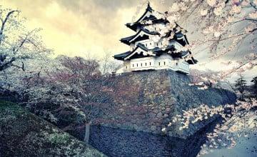 4K Nature Wallpaper Spring Japan