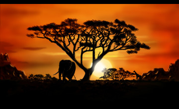 African Scenery Desktop Wallpaper