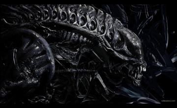 Alien HD Wallpaper