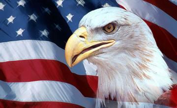 American Flag Eagle Wallpaper