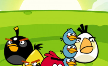 Angry Birds Wallpaper Border