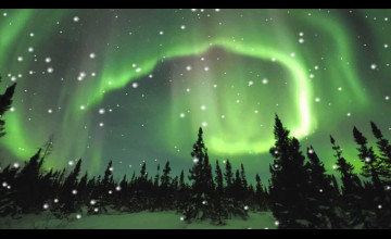 Animated Aurora Borealis Wallpaper