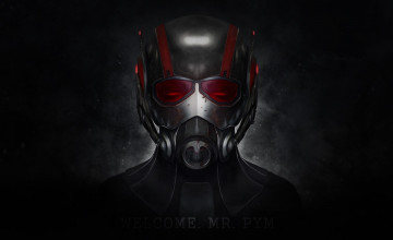 Ant Man PC Wallpaper