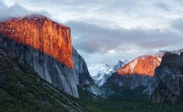 Apple El Capitan Wallpaper