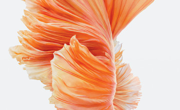 Apple Live Wallpapers iPhone 6s