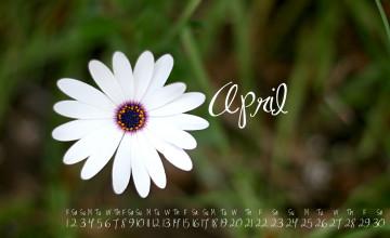 April Wallpaper Free