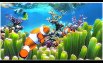 Aquarium Live Wallpaper Windows 7