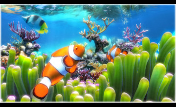 Aquarium Live Wallpaper Windows 8