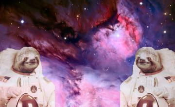 Astronaut Sloth Wallpaper