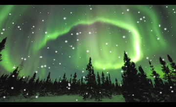 Aurora Borealis Wallpaper Moving