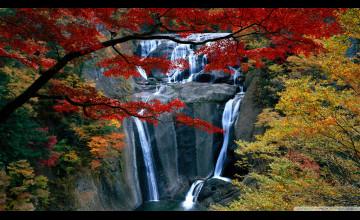Autumn Waterfall Free Wallpaper