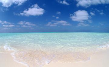 Beaches Background
