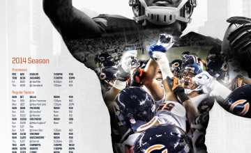 Bears Wallpaper 2014
