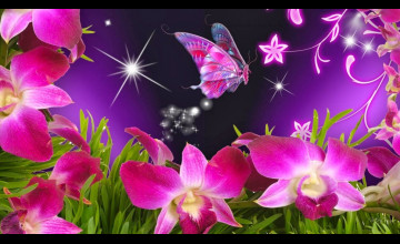 Beautiful Butterflies and Flowers Wallpapers