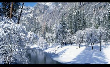 Beautiful Winter Desktop Wallpaper