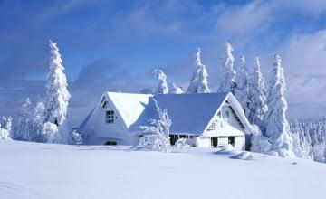 Beautiful Winter Wallpaper