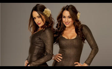 Bella Twins Wallpaper HD