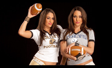 Bella Twins Wallpapers Desktop