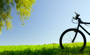 Bicycle Pictures and Wallpapers