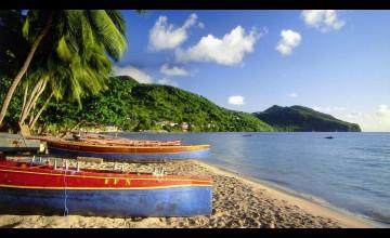 Bing Beach Images Wallpaper