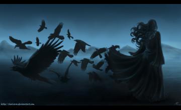 Bird Raven Wallpaper