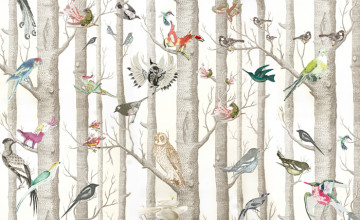 Bird Wallpaper for Home