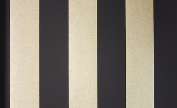 Black and Gold Striped Wallpaper
