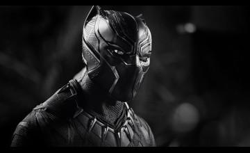 Black Panther 4K Wallpapers
