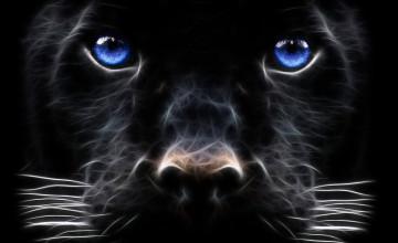 Black Panther Wallpaper Desktop
