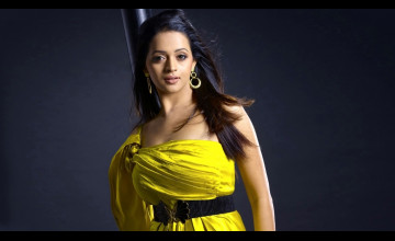 Bollywood Actresses Wallpapers HD 2013