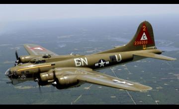 Bomber Wallpaper