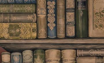 Bookshelf Wallpaper Border