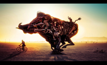 Burning Man Wallpapers