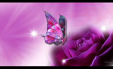Butterfly Wallpapers for Laptop