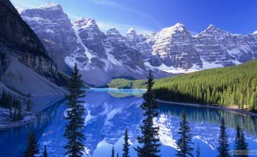 Buy Wallpaper in Canada