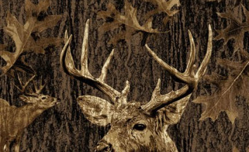 Camo Deer Wallpapers