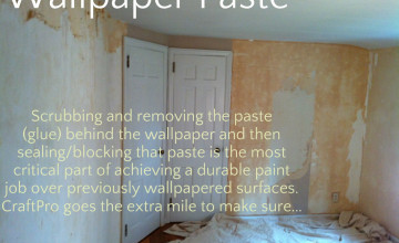 Can You Prime Over Wallpaper Glue