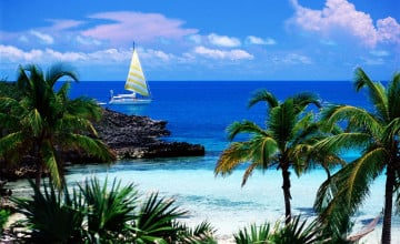 Caribbean Scenes Wallpaper