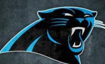 Carolina Panthers iPad Wallpaper