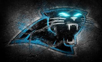 Carolina Panthers Laptop Wallpaper