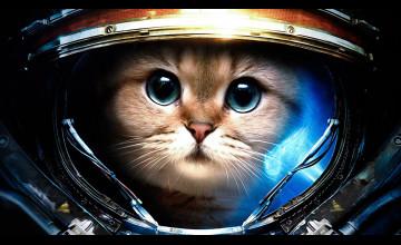 Cat Astronaut Wallpaper