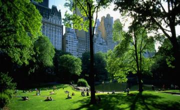 Central Park Background