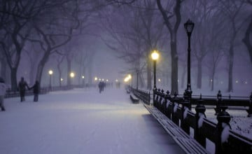Central Park In The Snow At Night Wallpapers