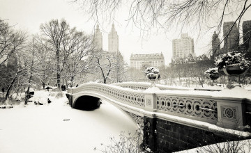 Central Park Winter Wallpaper